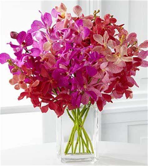 Tickled Pink Orchid Bouquet   VASE INCLUDED
