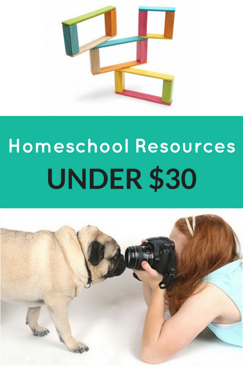 Homeschooling Resources Under $30 - Natural Parent Guide