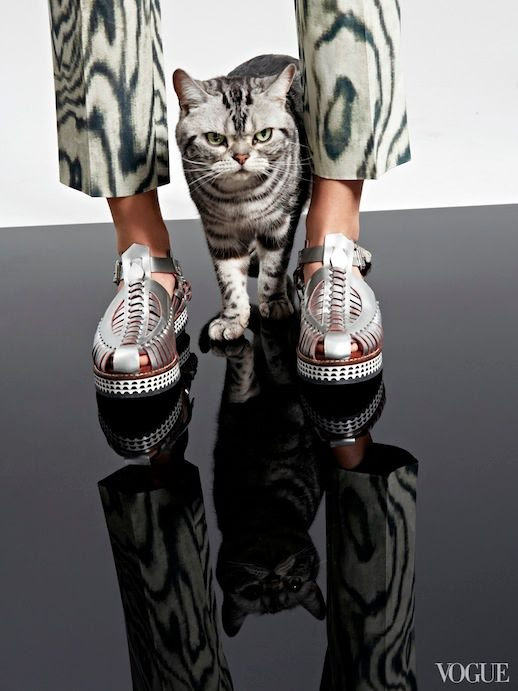 Le Fashion Blog Cats Kittens And Flats Balenciaga Studded Flat Leather Sandal Via Vogue photo Le-Fashion-Blog-Cats-And-Flats-Proenza-Schouler-Silver-Sandals-Via-Vogue.jpg