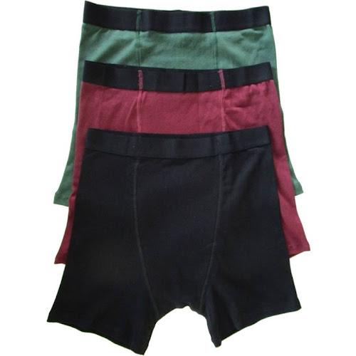 Stashitware Stash Pocket Boxer Brief Variety 3 Packs Men's Black,Red, Green