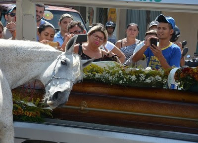 cavalo_velorio_vaqueiro (Foto: Reprodução/Kyioshi Abreu/)