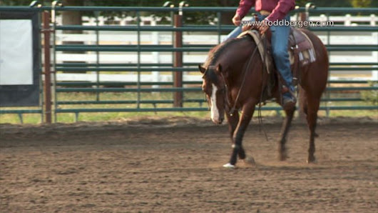 Todd Bergen - The Key to Balance in Loping