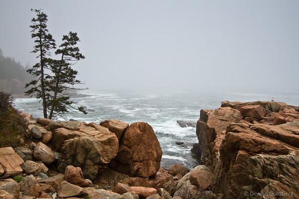 along Park Loop Road, Acadia National Park