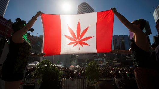 Marijuana could be legal by Canada Day 2018