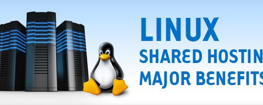 What Benefits Can You Get When You Buy Cheap Linux Shared Hosting?