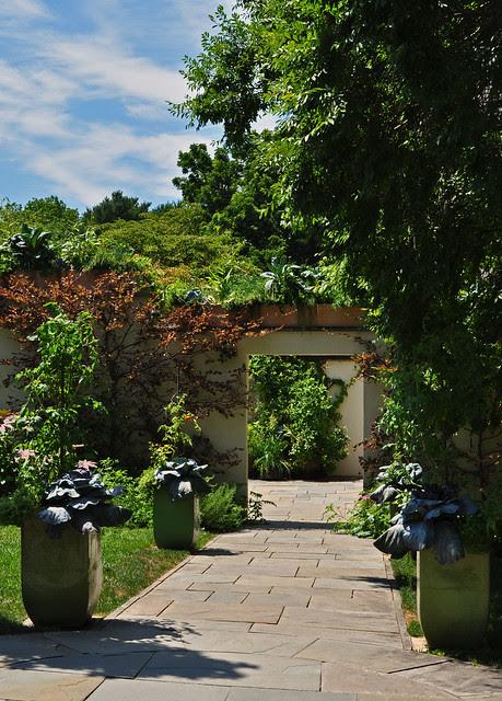 Teacup Garden (6)