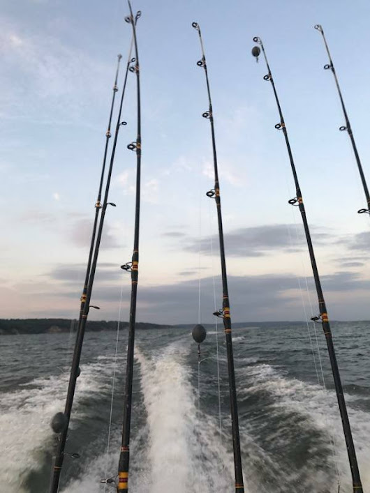 Lake Texoma Winter Striper Fishing | Buckley Striper Gude Service