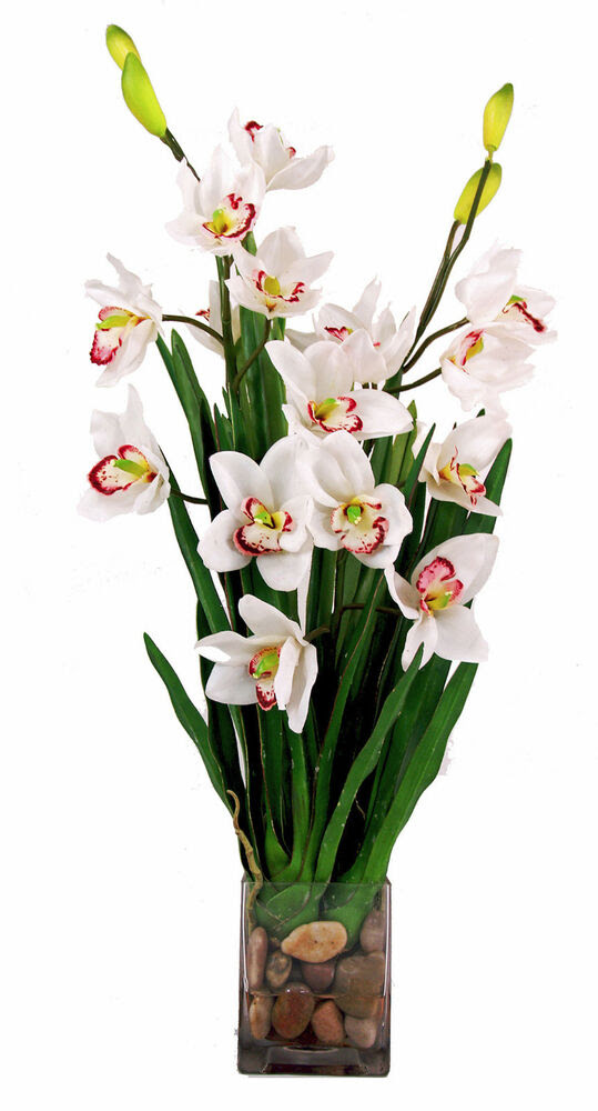 FLOWER ARRANGEMENTS  WHITE CYMBIDIUM ORCHID ARRANGEMENT