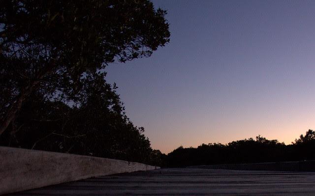 IMG_1101.CR2 Autumn Evening
