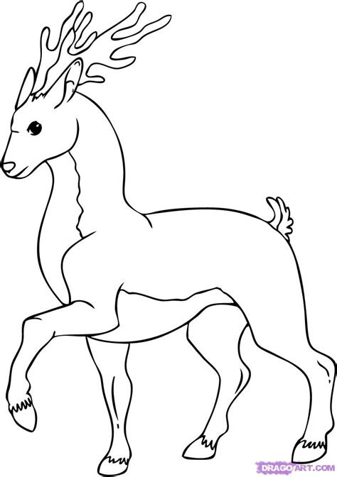 draw  cartoon deer step  step cartoon animals
