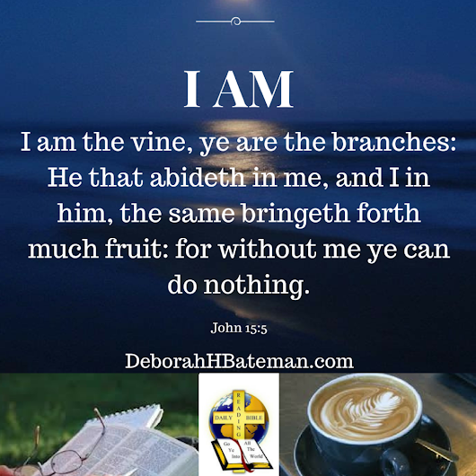 "Daily Bible Reading ""I Am the True Vine"" (John 15:1-11) 