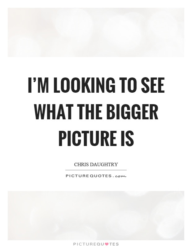 Im Looking To See What The Bigger Picture Is Picture Quotes