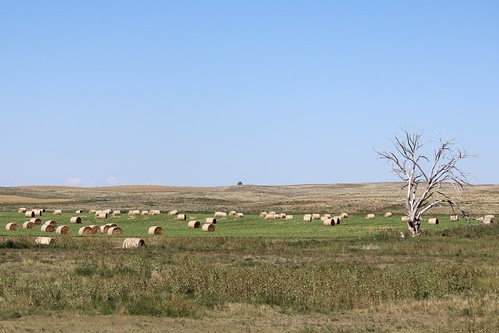 IMG_1683a_Round_Bales_Along_US_26_in_Nebraska