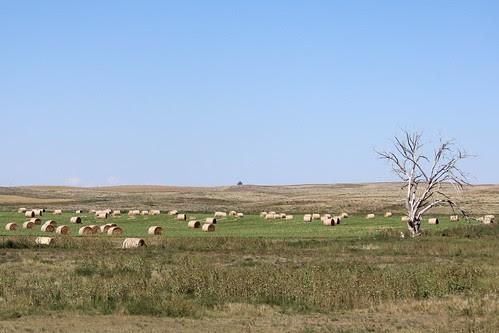 IMG_1683a_Round_Bales_Along_US_26_in_Nebraska