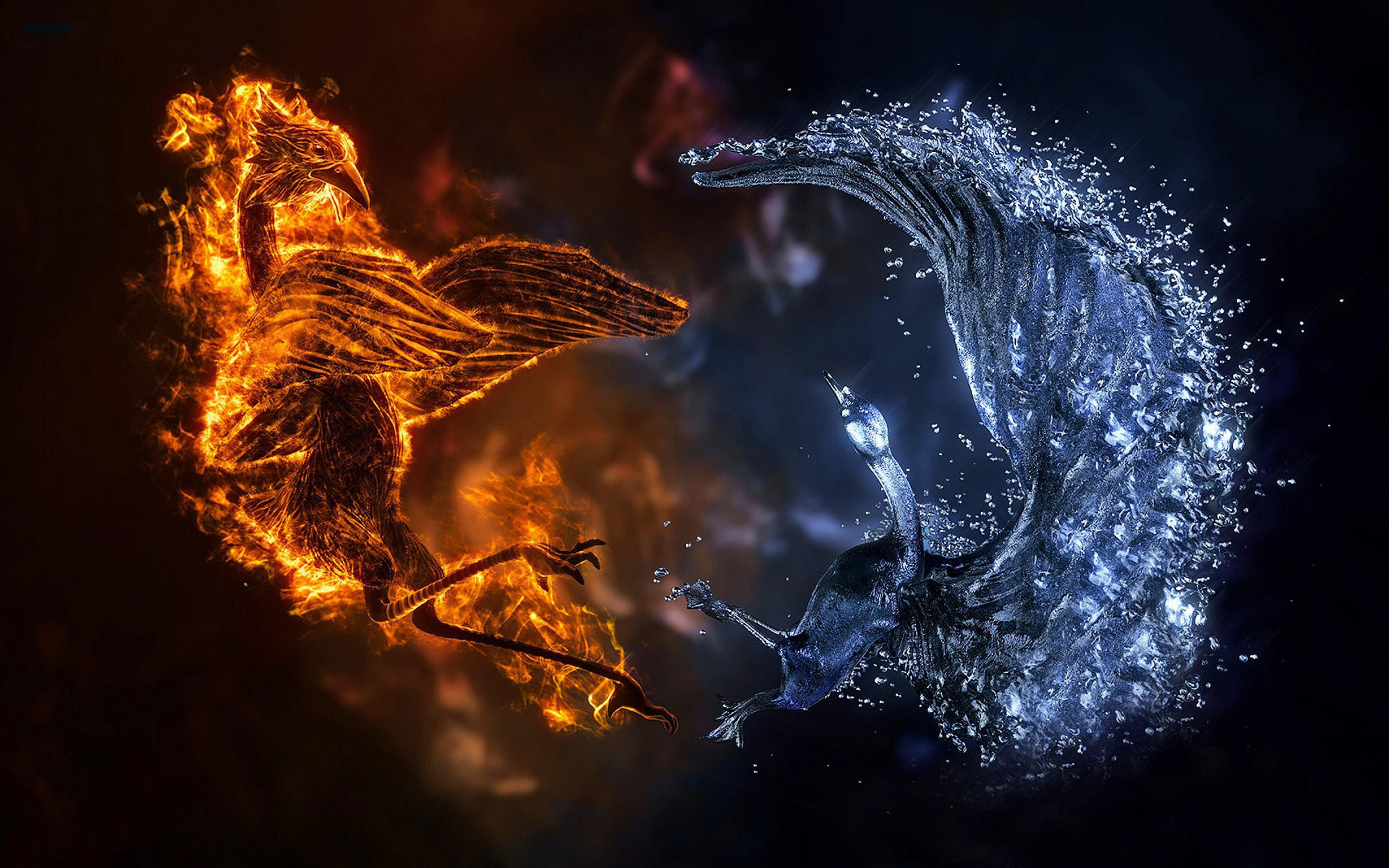 Hd Fire And Ice Birds Wallpaper Download Free 139940