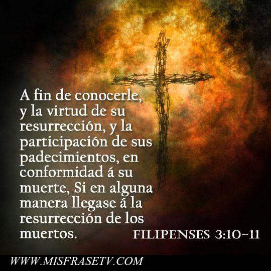 Imagenes De La Santa Muerte Con Frases Imagenes De La Santa Muerte