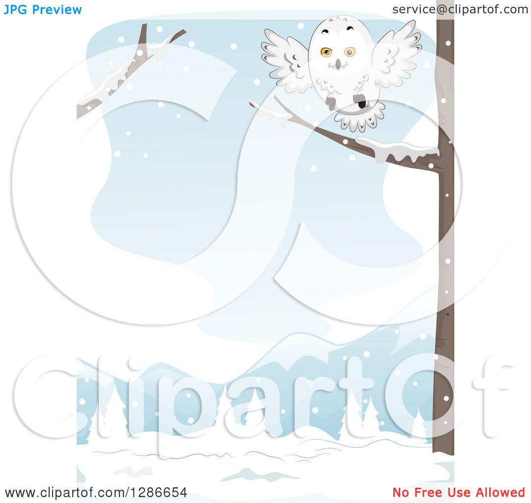 Owl On Branch Clip Art