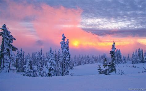 Snow Scenes Sunset HD Wallpaper   Wide Screen Wallpaper