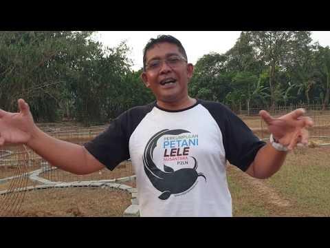 Perkumpulan Petani LELE NUSANTARA bagi-bagi terpal kolam GRATIS