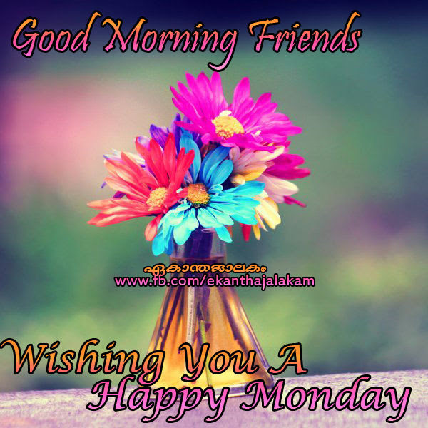 Good Morning Friends Happy Monday Pictures Photos And Images For