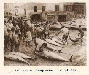 Venta de atún en el Mercado del Carmen de Huelva. / Foto: tonyines.