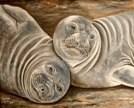 Acrylic Painting Elephant Seals in the by SharonsCustomArtwork