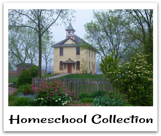 Homeschool Collection {Monthly Round UP}