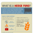 What Is a Hedge Fund? | The Big Picture