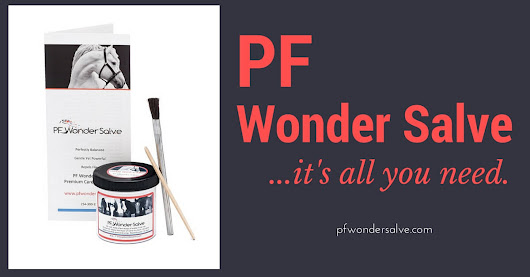 PF Wonder Salve Proud Flesh Treatment for Horses