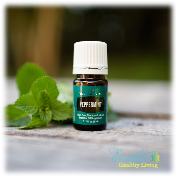 Peppermint Young Living essential oils