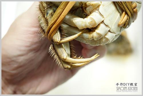 清蒸大閘蟹05
