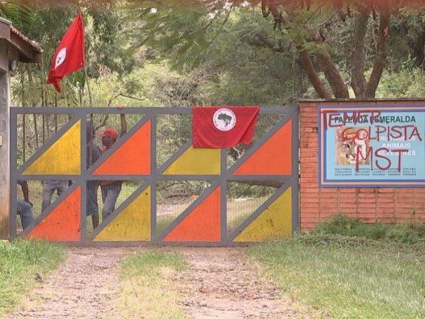 Fazenda ocupada tem cerca de 1,5 mil hectares (Foto: TV TEM/Reprodução)