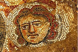 From the mosaic.