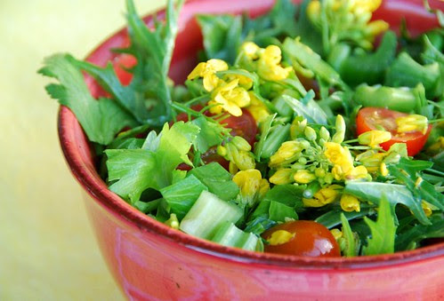 spicy mizuna and broccoli flower salad