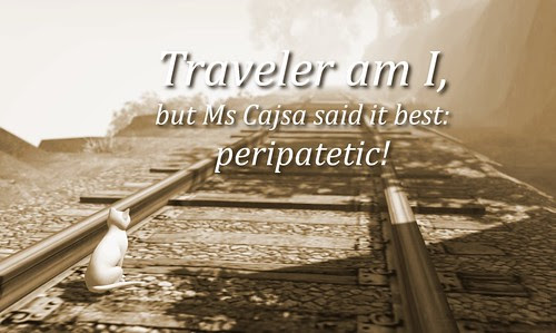 Traveler am I - haiku meme
