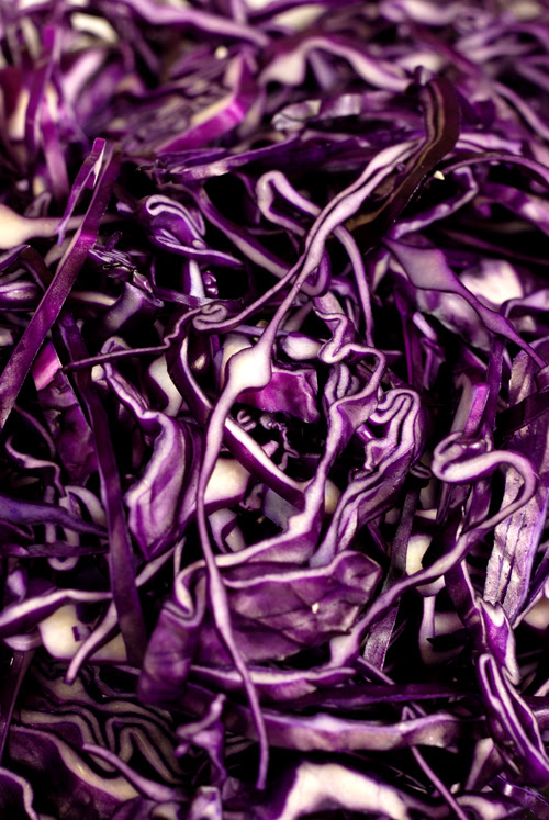 sliced red cabbage© by Haalo