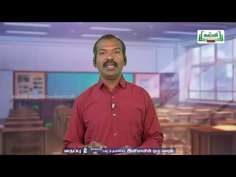 2nd Tamil Bridge Course இனியாவின் ஒரு வாரம், வடிவங்கள் நாள் 7,8 Kalvi TV