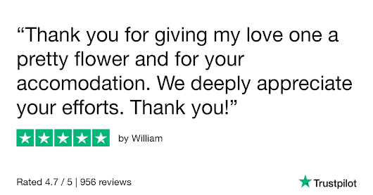 William gave Online Flower Shop 5 stars. Check out the full review...