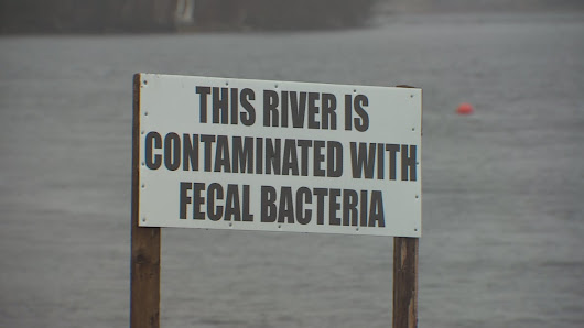 Billions of litres of raw sewage, untreated waste water pouring into Canadian waterways