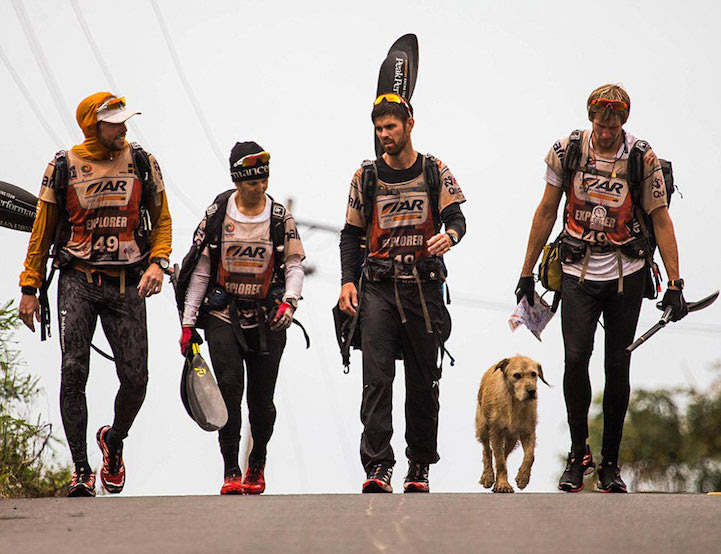 Stray_Dog_Arthur_Completed_430-mile_Race_1