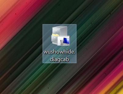 Inicie el archivo para mostrar u ocultar actualizaciones en Windows 10