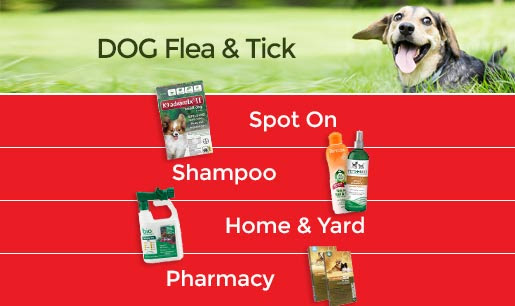 Flea and Tick Solution Center