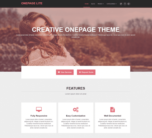OnePage Lite – Free SEO-Optimized Onpage business WordPress theme
