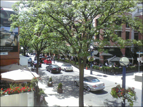 Sunny Yorkville, June 20th