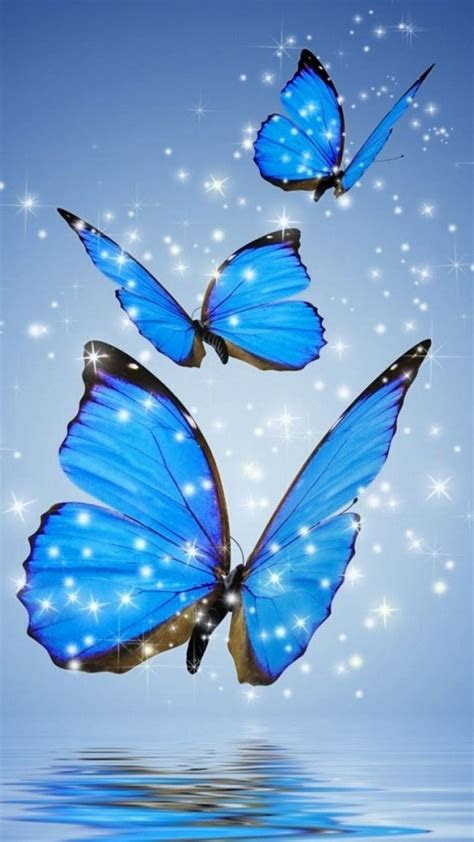 wallpaper iphone blue butterfly   iphone wallpaper