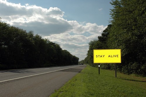 stay alive web.jpg