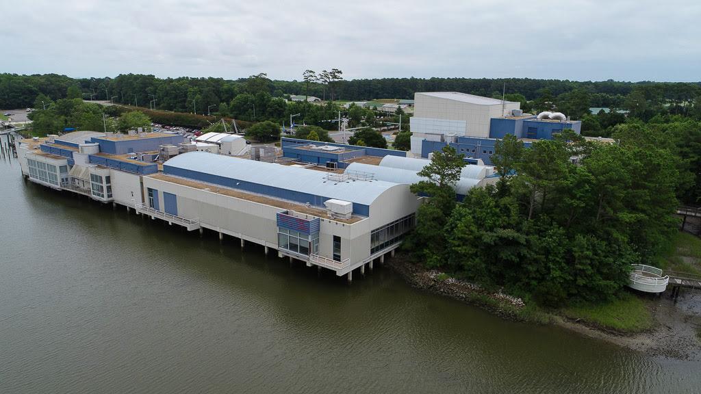 Virginia Aquarium And Marine Science Center Virginia Beach Virginia Wpl