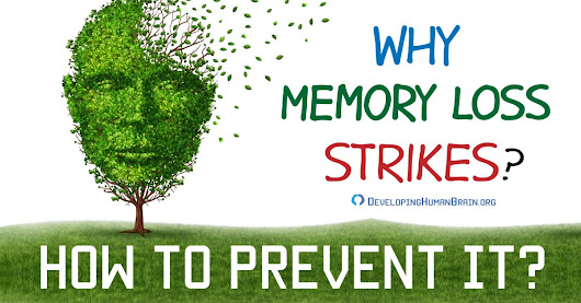 Why Memory Loss Strikes and How to Prevent It?