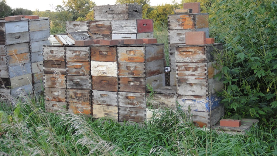 Lighter Equipment Eight Frame Mediums Cutting Down Hives Michael Bush