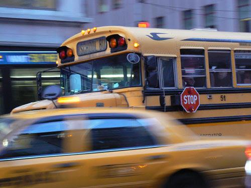 bus et taxis.jpg